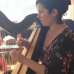 Joleen McLaughlin, Harp, Irish Harp, Ceol na Coille Summer School, Irish Traditional Music, Letterkenny, Co. Donegal Ireland, WAW, Wild Atlantic Way, Paul Harrigan